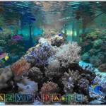 Морской океанариум в Москве — цены, адрес