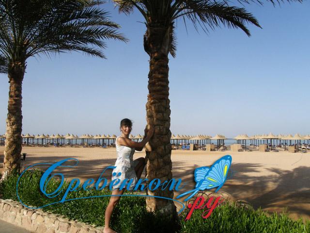 Пляж у отеля в Египте