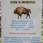 Приокско-террасный заповедник: питомник зубров
