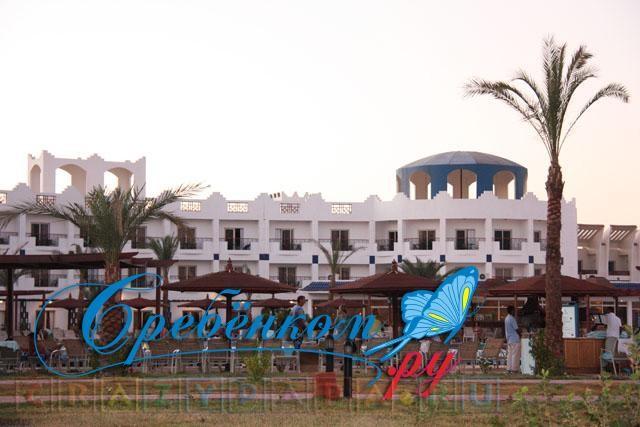 Типичный отель Египта: Topaz Golden Five 4