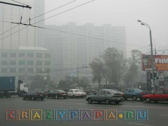 Вы пережили лето-2010 в Москве, если...