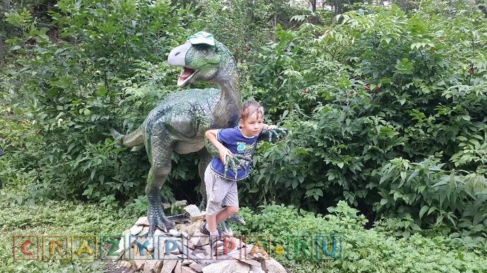 Парк зоопарков в Котельниче